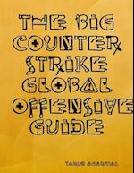 Big Counter Strike Global Offensive Guide