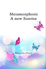 Metamorphosis, a new sunrise