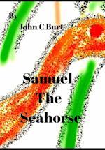 Samuel The Seahorse.