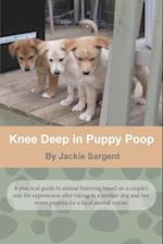 Knee Deep in Puppy Poop