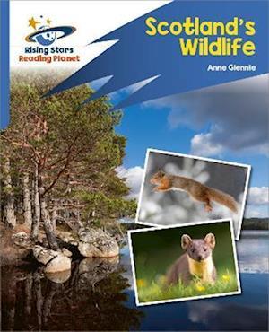 Reading Planet: Rocket Phonics - Target Practice - Scotland's Wildlife - Blue