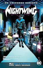 Nightwing 2 (Nightwing)
