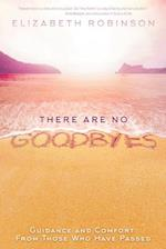 There Are No Goodbyes