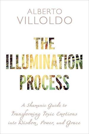 Bog, paperback The Illumination Process af Alberto Villoldo
