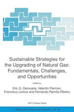 Sustainable Strategies for the Upgrading of Natural Gas: Fundamentals, Challenges, and Opportunities (NATO Science Series: II: Mathematics, Physics and Chemistry, nr. 191)