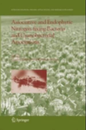 Associative and Endophytic Nitrogen-fixing Bacteria and Cyanobacterial Associations
