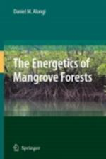 Energetics of Mangrove Forests