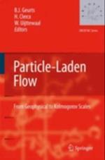 Particle-Laden Flow