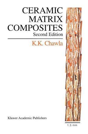 Ceramic Matrix Composites : Second Edition