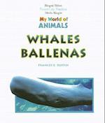 Ballenas = Whales