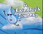 A Raindrop's Journey (Follow It!)