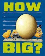 How Big? (Wacky Comparisons)