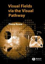 Visual Fields via the Visual Pathway