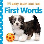 Baby Touch and Feel First Words (Baby Touch and Feel)