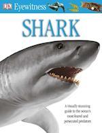 Shark (Eyewitness)