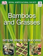 Bamboos and Grasses