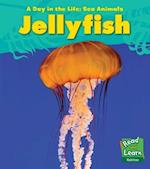 Jellyfish (Young Explorer: A Day in the Life: Sea Animals)