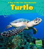 Sea Turtle (Young Explorer: A Day in the Life: Sea Animals)