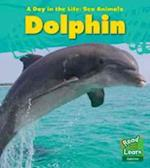 Dolphin (Young Explorer: A Day in the Life: Sea Animals)