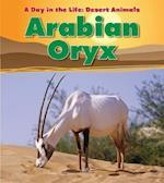 Arabian Oryx (Day in the Life: Desert Animals)