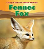 Fennec Fox (Day in the Life: Desert Animals)