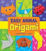 Easy Origami (Easy Origami)