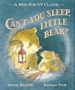 Can't You Sleep, Little Bear? (Cant You Sleep Little Bear)