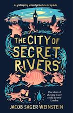 City of Secret Rivers