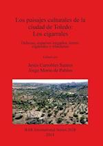 Los paisajes culturales de la ciudad de Toledo: los cigarrales (British Archaeological Reports International Series, nr. 2638)