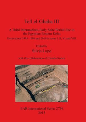 Bog, hæftet Tell el-Ghaba III: A Third Intermediate-Early Saite Period Site in the Egyptian Eastern Delta: Excavations 1995-1999 and 2010 in areas I, II, VI and V