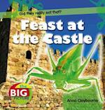 Feast at the Castle af Anna Claybourne