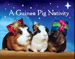 Guinea Pig Nativity