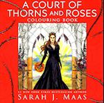 A Court of Thorns and Roses Colouring Book (Chameleons)