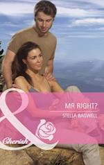 Mr Right? (Mills & Boon Cherish) (Montana, Book 18) af Stella Bagwell
