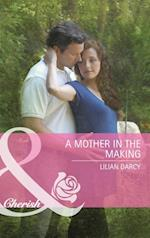 Mother in the Making (Mills & Boon Cherish) af Lilian Darcy