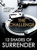 Challenge (Mills & Boon Spice Briefs) af Megan Hart