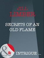 Secrets Of An Old Flame af Jill Limber