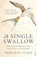 Single Swallow