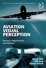 Aviation Visual Perception (Ashgate Studies in Human Factors for Flight Operations)