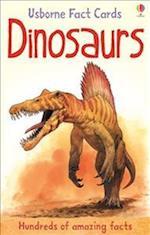 Hundreds of Dinosaur Facts Cards (Usborne Fact Cards)