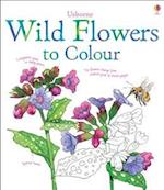 Wild Flowers to Colour (Nature Colouring Books)