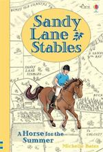 Sandy Lane Stables - A Horse for the Summer (Young Reading, nr. 4)