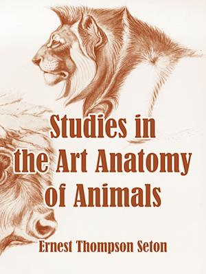Studies in the Art Anatomy of Animals