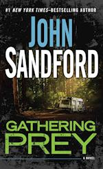 Gathering Prey (Thorndike Press Large Print Basic Series)