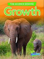 Growth (RAINTREE PERSPECTIVES)