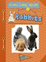 Rabbits (RAINTREE PERSPECTIVES)