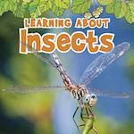 Learning About Insects (Natural World)