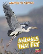 Animals That Fly (Read Me!)