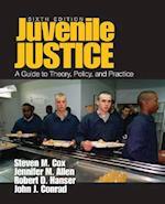 Juvenile Justice af Steven M. Cox, John J. Conrad, Jennifer M. Allen