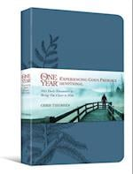 The One Year Experiencing God's Presence Devotional af Chris Tiegreen